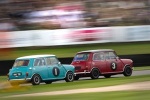 Even More Minis For The 2019 Goodwood Members' Meeting!