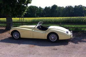 JAGUAR - XK 120 Roadster - 1954