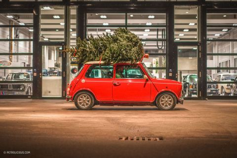 Spreading Christmas Cheer With A Mini And A Tree