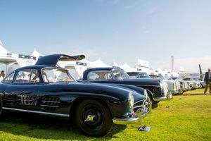 Where Do You Find Road Runner Superbirds And Mercedes Gullwings In The Same Flock?